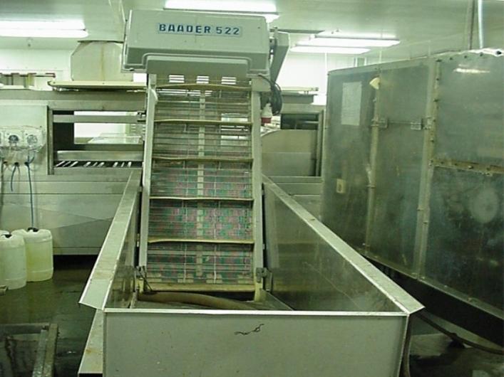 Baader 522 Uplift Conveyor