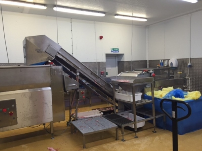 Mincing Line for 1000kg/hour of Minced Meat