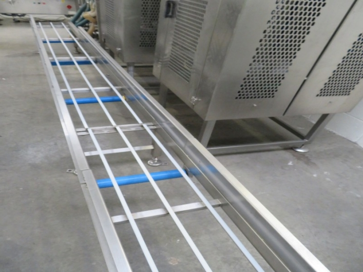 Lot No. 55 - Straight Conveyor