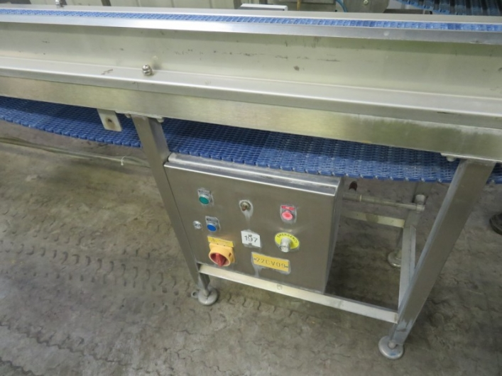 Lot No. 66 - Straight conveyor