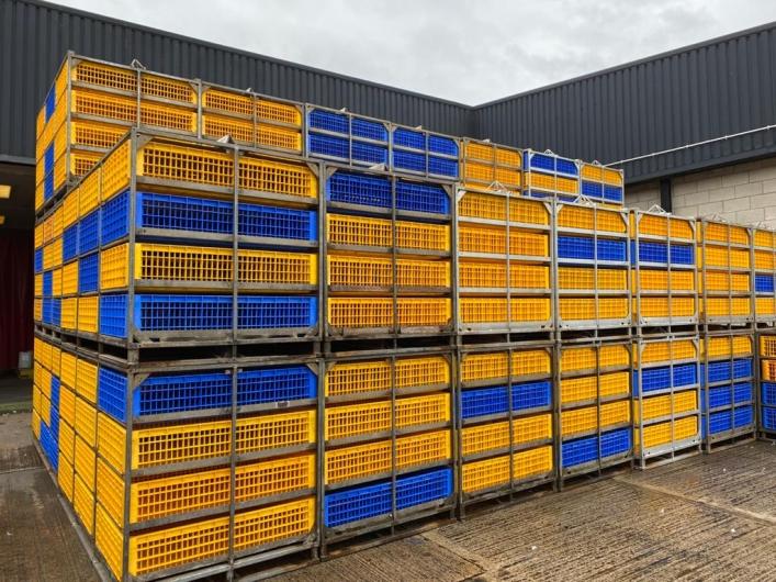 Anglia Autoflow Easyload Live Bird Handling System