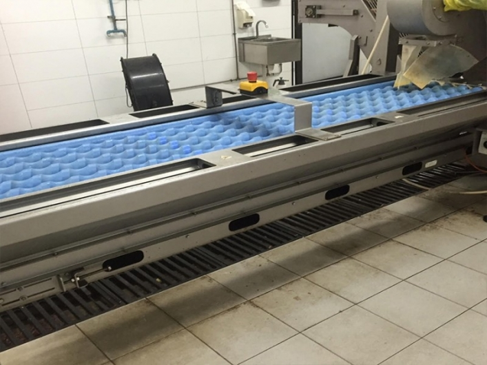 Onion Processing Line