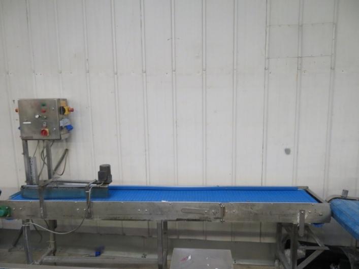 Lot No. 67 - Straight conveyor