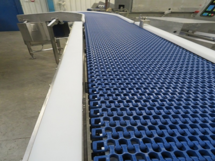 Lot No. 41 - LAC Curved Conveyor