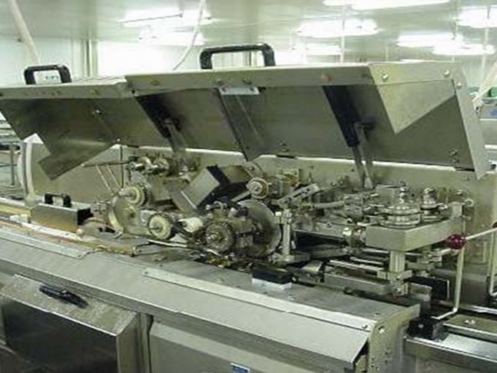 Baader 208 Filleting Machine with Baader 417 V Cut Heading Machine