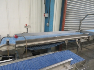 Lot No. 65 - Straight conveyor